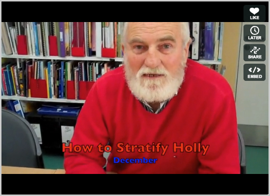 How to stratify holly