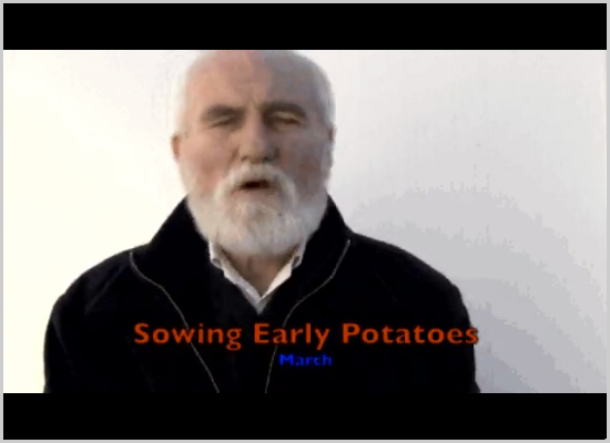 A Sowing Early Potatoes