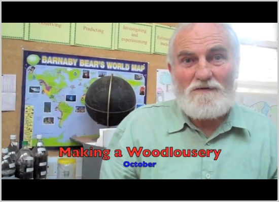 October - How to make a woodlouse observation box